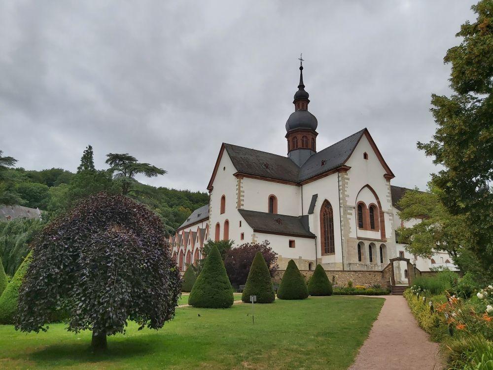 Rheingau 4th-6th Juli 2020