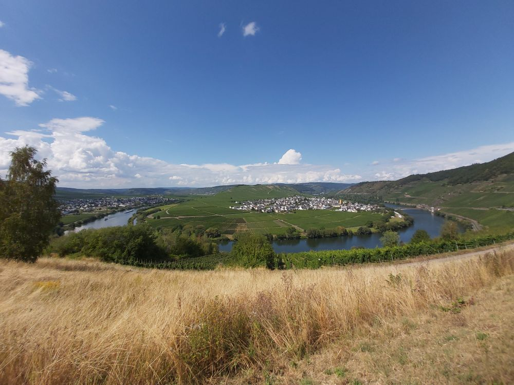 2 days summer break at Mosel & Saar