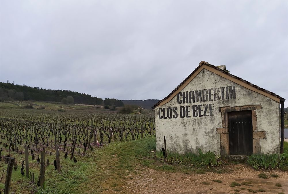 Short trip to Burgundy